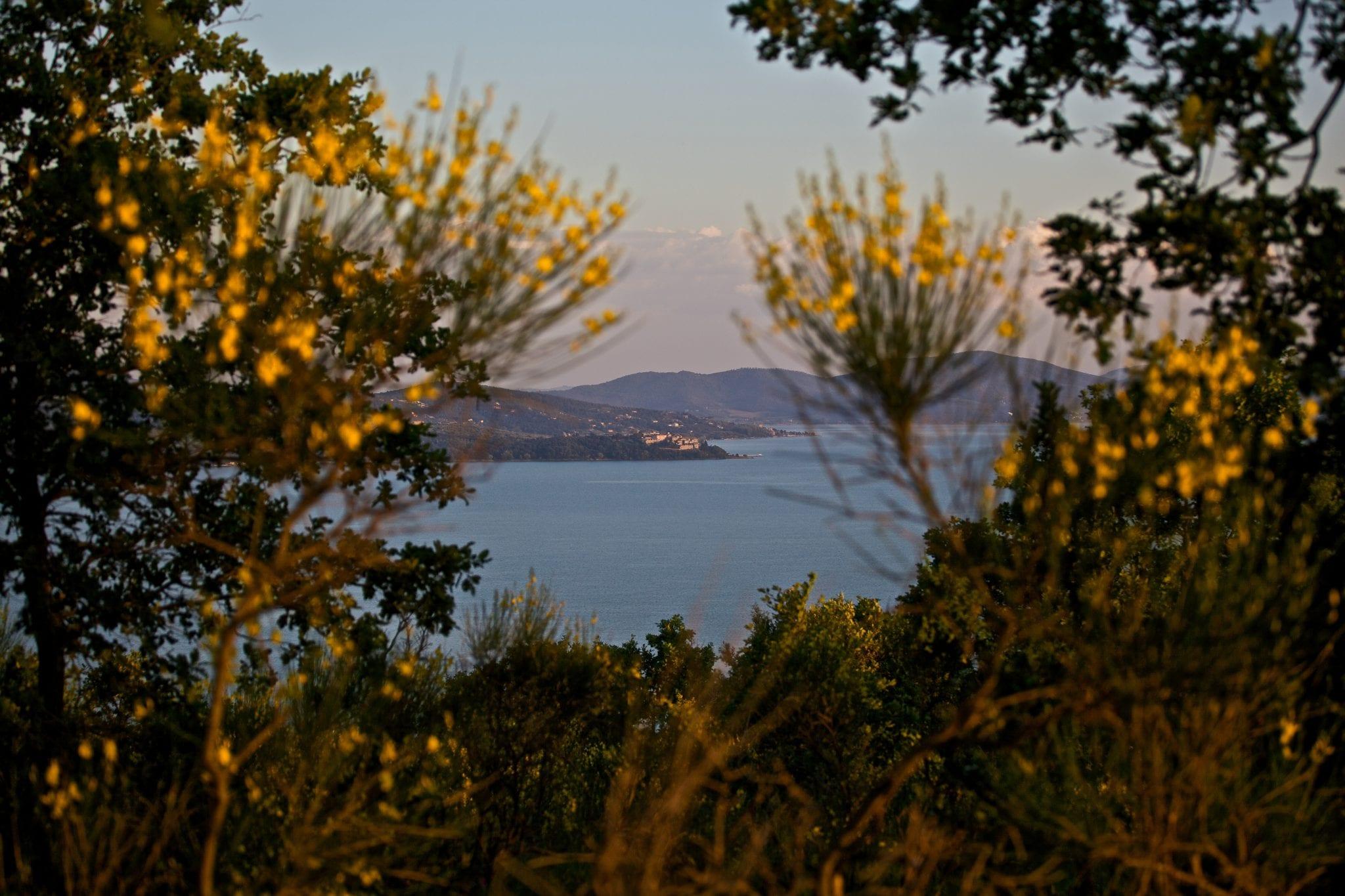 Lago Trasimeno3